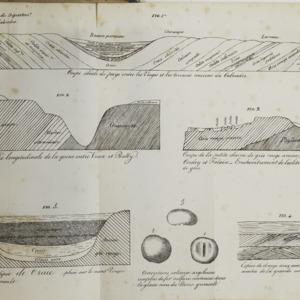 Calvados_1825_planche_2.png